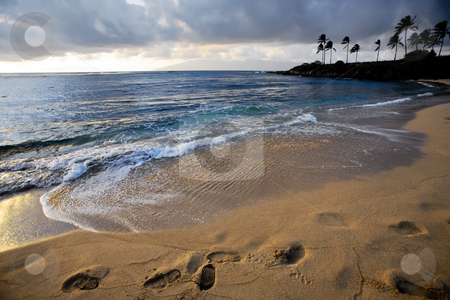 Footsteps in Sand at Sunset stock photo, Beautiful idyllic tropical beach at sunset casts shadows into deep footprints by Eva Browning