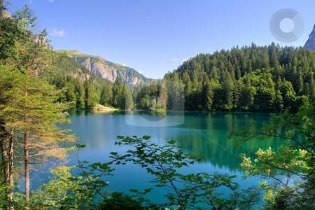 Tovel lake HDR stock photo, Summer view of Tovel Lake, Val di Sole, Trentino Italy. Photo processing with HDR technique by ANTONIO SCARPI