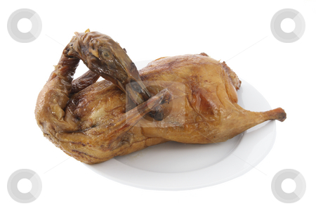 Chinese Roast Duck on Plate stock photo, Chinese Roast Duck on Plate with White Background by Lai Leng Yiap
