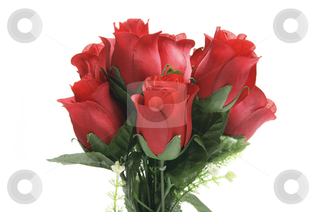 A Bunch of Red Roses stock photo, A Bunch of Red Roses on White Background by Lai Leng Yiap