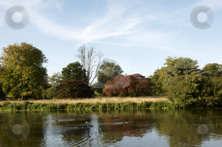 Lake stock photo, A lake in summer in the countryside by Mark Bond