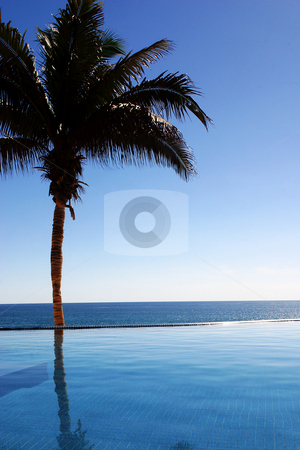 Coast of Mexico stock photo, Pool in Los Cabos, Baja California Sur, Mexico by Carlos Sanchez