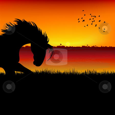 Silhouette view of a horse, sunset background stock photo, Silhouette view of a horse, sunset background by Abhishek Poddar