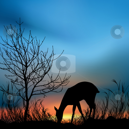 Silhouette view of a deer eating grass stock photo, Silhouette view of a deer eating grass by Abhishek Poddar