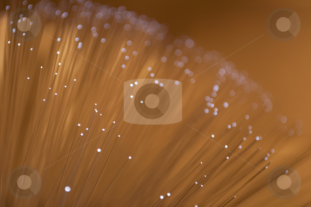 Golden fibre optic background. stock photo, Close and low level angle capturing the ends of many golden fibre optic light strands. by Samantha Craddock