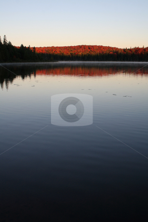 Algonquin First Light stock photo, The first light of dawn shining on the beautiful autumn colors of Algonquin Park in Ontario, Canada. by Chris Hill