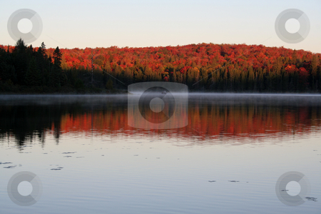 Algonquin Dawn stock photo, The first light of dawn shining on the beautiful autumn colors of Algonquin Park in Ontario, Canada. by Chris Hill