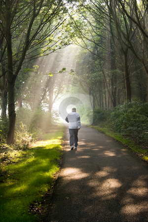 Middle aged man jogging on early morning stock photo, Middle aged man jogging on early summer morning in park - vertical image by Colette Planken-Kooij