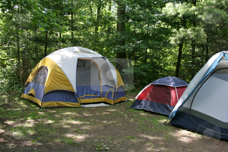 Sunlit Campsite stock photo, Three tents sitting in the shade on a campground. by Chris Hill