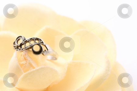 Ring on flower stock photo, Beautiful macro shot of a ring on a soft flower. Good for wedding products. by Claudiu Badea