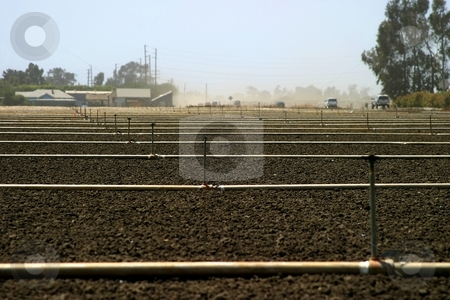 Empty field stock photo, Empty brown agricultural field with irrigation pipes by Henrik Lehnerer