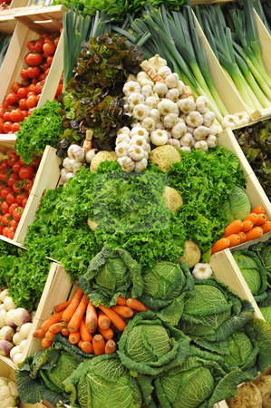 Vegetables stock photo, Colorful vegetables, tomatoes, leeks, garlics, salads, lettuces, carrots, cabbages, celery root and purple turnips by Bonzami Emmanuelle