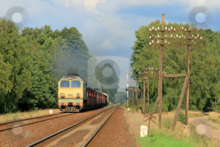 Freight train passing the forest stock photo, Freight train hauled by the diesel locomotive is passing the forest by Jan Remisiewicz