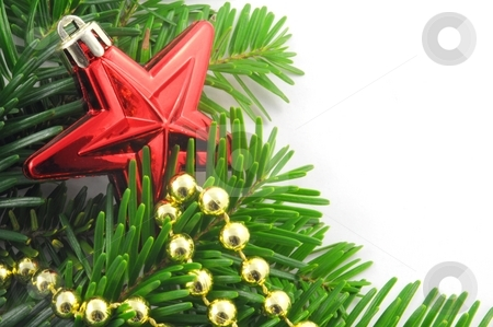 Green fir for christmas stock photo, Green fir for christmas with blank and empty copyspace by Gunnar Pippel