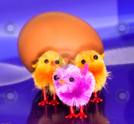 Chicks in front of an egg stock photo, Toy orange and purple chicks in front of an egg by James Janisse