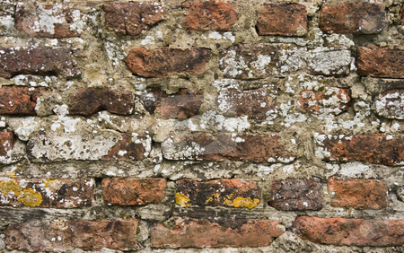 Part of 300 years old brick stone wall in close view stock photo, Part of 300 years old brick stone wall, overgrown with lichens, in close view by Colette Planken-Kooij
