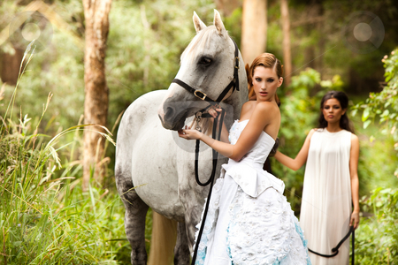 Young Women with Horse stock photo, Two young women in flowing white dresses stand next to a white horse in a serene, wooded area. Horizontal shot. by Angela Hawkey