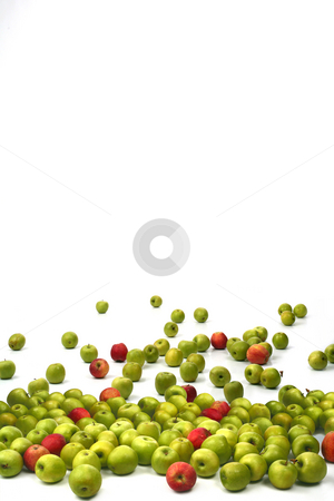 Apples stock photo, Apples green and red on a white background by Dmitry Skutin