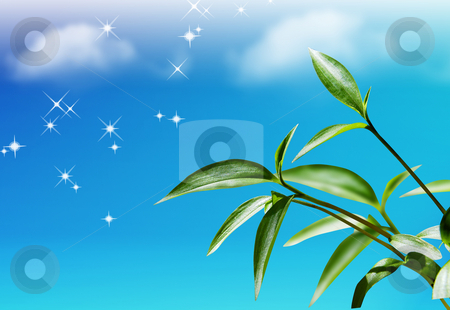 Spring stock photo, Nice spring picture on sky background by Gagik Grigoryan