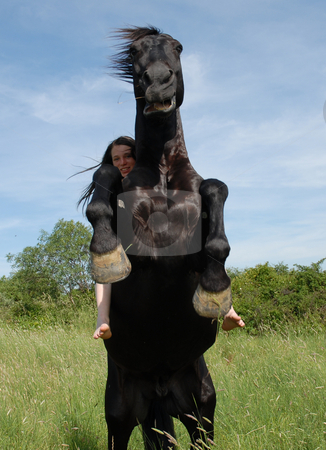 Girl and rearing horse stock photo, Young smiling woman on her black rearing stallion in a field by Bonzami Emmanuelle
