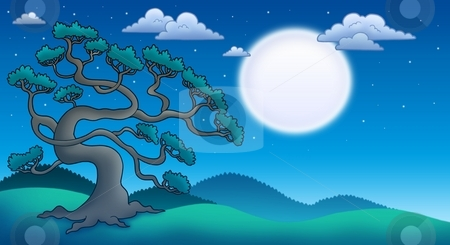 Night landscape with old pine tree stock photo, Night landscape with old pine tree - color illustration. by Klara Viskova