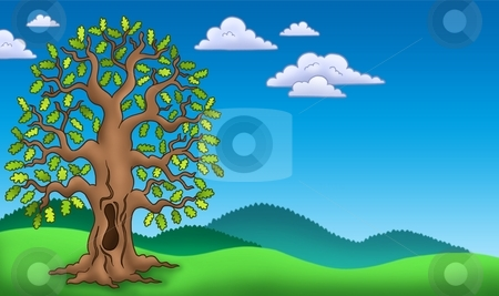 Landscape with oak tree stock photo, Landscape with oak tree - color illustration. by Klara Viskova