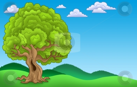 Landscape with big leafy tree stock photo, Landscape with big leafy tree - color illustration. by Klara Viskova