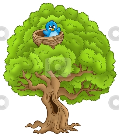 Big tree with blue bird in nest stock photo, Big tree with blue bird in nest - color illustration. by Klara Viskova