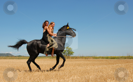 Riding woman stock photo, Two beautiful young women on their black stallion in a meadow by Bonzami Emmanuelle