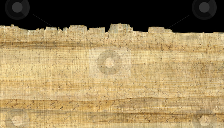 Papyrus paper background and edge stock photo, Papyrus paper rough texture with fiber pattern, wrinkles, loose fibers and dust, edge shown against black background by Marek Uliasz