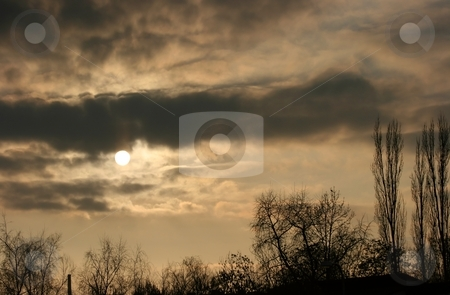 Sunset stock photo, Sunset, with clouds and silhouttes of trees by P?