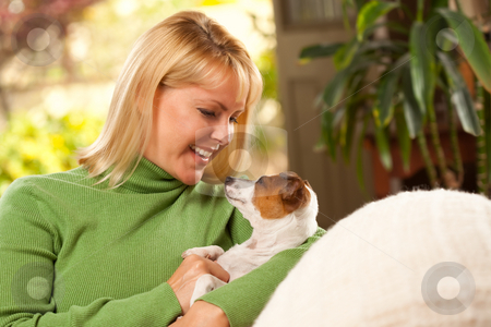 Woman and Puppy Enjoying Their Day on The Sofa stock photo, Woman and Jack Russell Terrier Puppy Enjoying a Day on The Sofa. by Andy Dean
