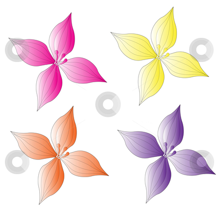 Flower stock photo, Four color flower on the white background by Su Li