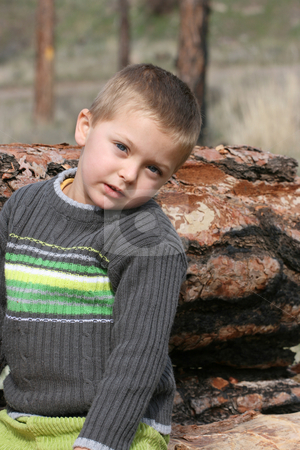 Little boy stock photo, Little blond boy sitting on a tree trunk in the woods by Vanessa Van Rensburg