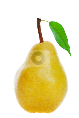 Golden pear stock photo, A juicy ripe golden pear on white background by Steve Mcsweeny