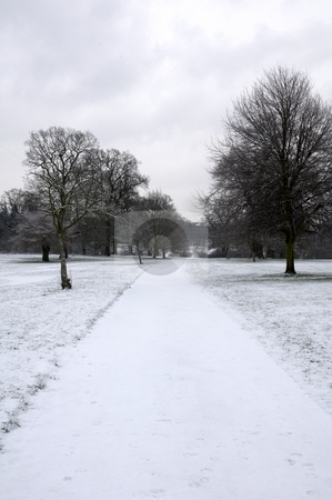 Winter park stock photo, A footpath covered in snow with trees in the background by Mark Bond