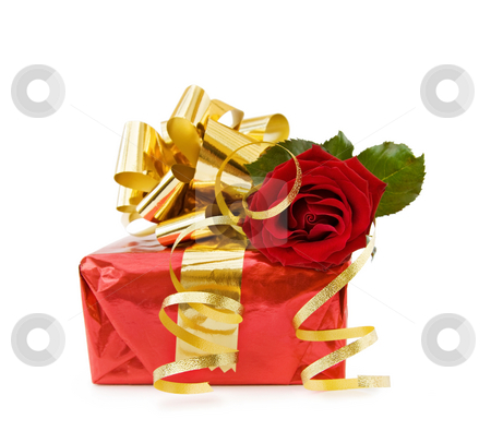 Festive gift with red rose stock photo, Festive gift with red rose and golden ribbons for the celebration of a special day. Isolated on white. by Andreea Chiper