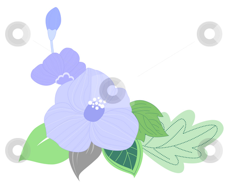 Blue flower stock photo, Flower on the white background by Su Li