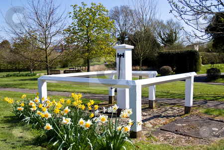 Old hand water pump stock photo, Old hand water pump in a village location with flowers. by Paul Phillips