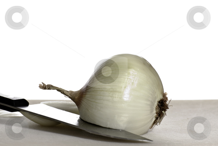 Whole Onion stock photo, An onion and a knife shot on a cutting board with a pure white background by Richard Nelson