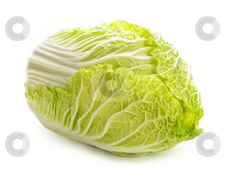 Isolated chinese cabbage stock photo, Whole green chinese cabbage head isolated on white by Elena Elisseeva