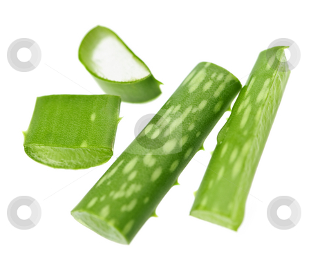 Aloe vera plant pieces stock photo, Closeup of aloe vera plant pieces isolated on white background by Elena Elisseeva