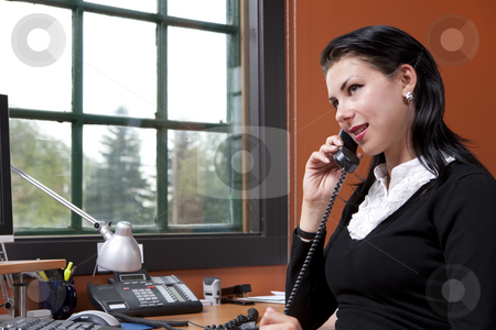 Attractive Young Businesswoman Talking On Phone stock photo, An attractive young businesswoman is sitting in front of a computer and smiling.  She is holding a phone to her ear. Horizontal shot. by Dan Bannister