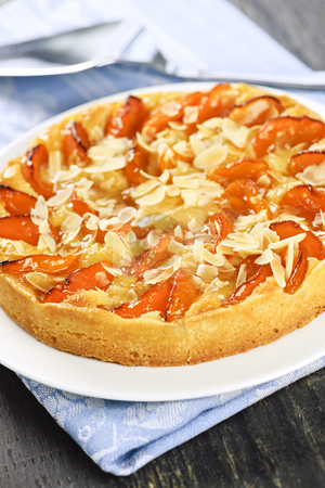 Apricot and almond pie stock photo, Fresh baked apricot and almond pie dessert by Elena Elisseeva