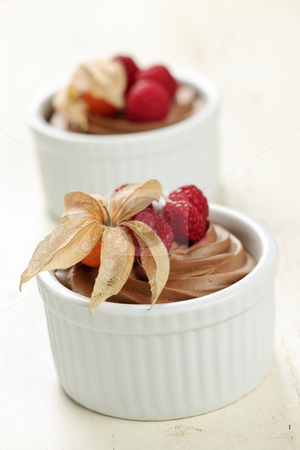 Chocolate mousse dessert stock photo, Two servings of chocolate mousse dessert with fruit by Elena Elisseeva
