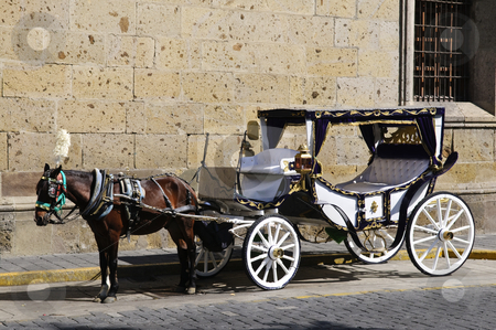 Horse drawn carriage in Guadalajara, Jalisco, Mexico stock photo, Horse drawn carriage waiting for tourists in historic Guadalajara, Jalisco, Mexico by Elena Elisseeva