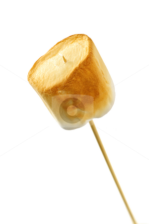 Toasted marshmallow stock photo, Golden toasted marshmallow on a wooden skewer by Elena Elisseeva