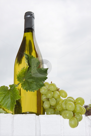 Wine and grapes stock photo, Bottle of white wine with grapes and vine leaves by Anneke