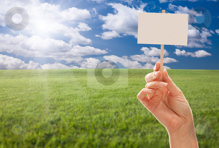 Blank Sign in Hand Over Grass Field and Sky stock photo, Blank Sign in Female Fist Over Grass Field and Sky with Clouds. by Andy Dean