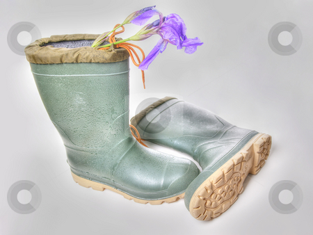 HDR Boots stock photo, HDR shot of a pair of rubber boots with an iris in them. by Richard Nelson